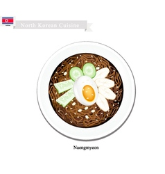 Naengmyeon or Korean Cold Noodles vector