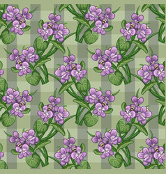 Seamless pattern bouquet of violets tied with a vector