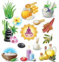 set spa treatment symbols vector image