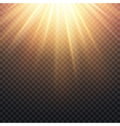 Realistic transparent yellow sun rays warm orange vector image vector image