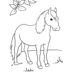 a horse under the tree eps 10 vector image