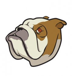 bulldog face 2 vector image