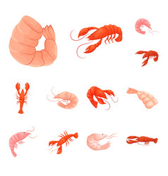 design of shrimp and crab symbol vector image