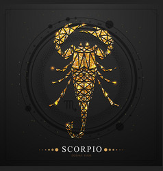 Magic witchcraft card with scorpio zodiac sign vector