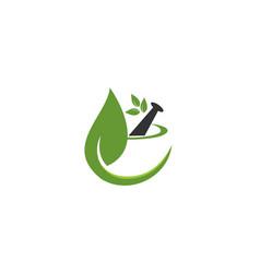 pharmacy logo design vector image