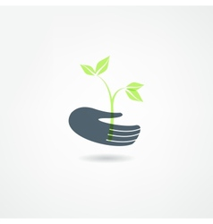 plants icon vector image