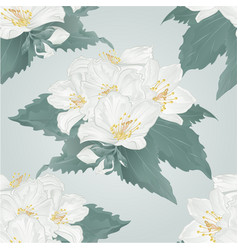 Seamless texture jasmine flowers and buds twig vector