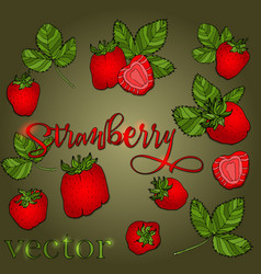 set of strawberries of different shapes vector image