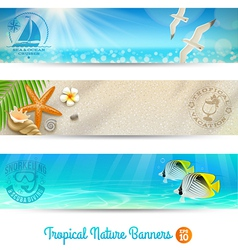 Travel and vacation banners with tropical natures vector
