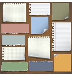 Various notes paper vector image
