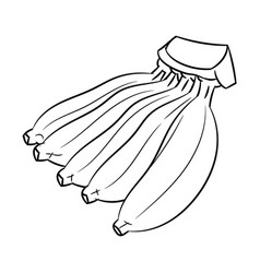 line drawing of banana -simple line vector image