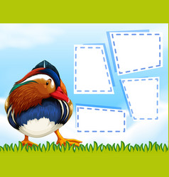 a colourful duck template vector image