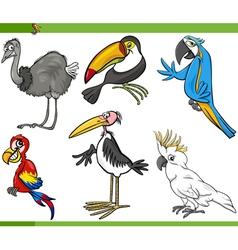 birds cartoon set vector image