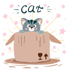 cat and box cute vector image