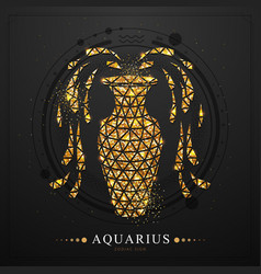 magic witchcraft card with aquarius zodiac sign vector image