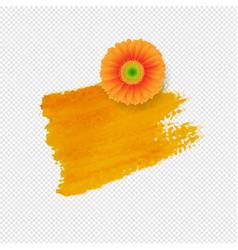 Orange blot with gerber transparent background vector