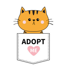 Orange cat sitting in the pocket adopt me pink vector
