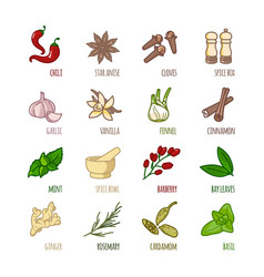 Spices and seasonings outline web icons set vector