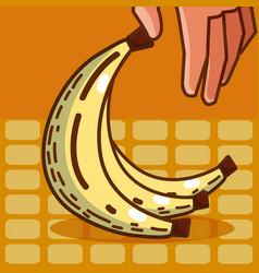 Sweet banana super market products vector