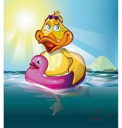 duck swim vector image