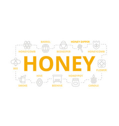 honey thin line banner for design concept vector image