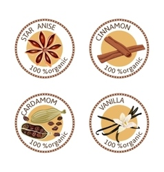 Set of spices labels 100 organic collection vector image vector image