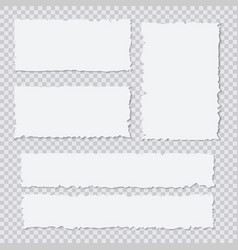 blank white torn paper pieces on transparent vector image