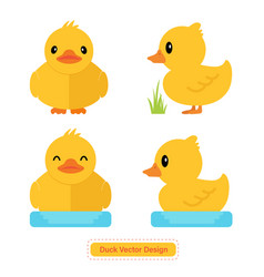 duck icon duck design vector image