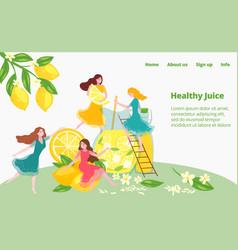 healthy juice preparation fruit diet drink vector image