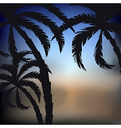 Palms sunset background vector
