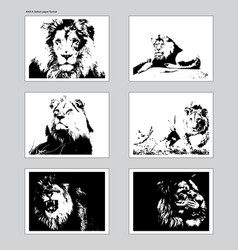 six posters with traced lion heads ansi a vector image