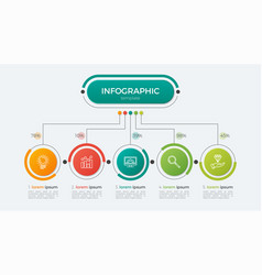 presentation infographic template 5 options vector image