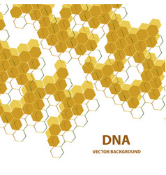 abstract dna structure medical science background vector image