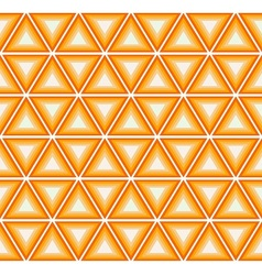 Citrus colorful triangles vector image