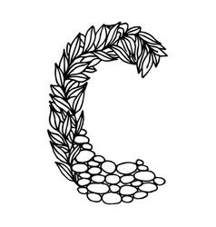 Letter alphabet c vector