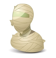 Mummy icon vector image