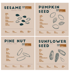 nutrition facts of seed hand draw sketch vector image