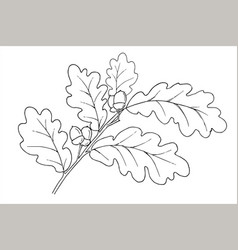 Oak branch isolated in doodle style vector