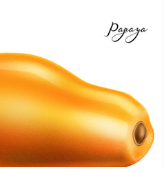 realistic 3d papaya pawpaw isolated closeup vector image