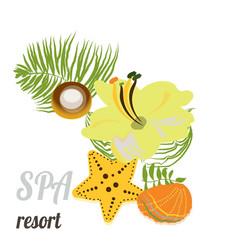 Starfish seashells sea stones and palm leaves vector