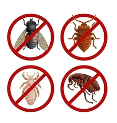 Set of disable signs with pest insects vector image