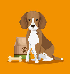 dog with bone and food bag pet friendly vector image