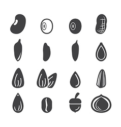 nut and seed icon vector image