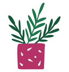 plant with leaves in pink flowerpot symbol vector image