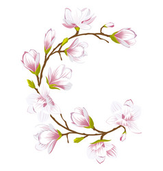 Round frame made of beautiful magnolia flowers vector