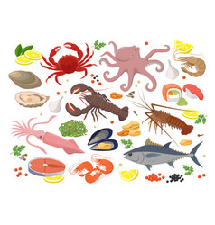 seafood big collection in vector image