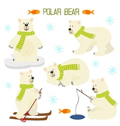 set of isolated polar bear vector image
