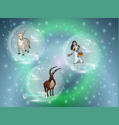 signs of the zodiac against the starry sky vector image
