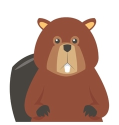 single beaver icon vector image