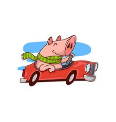 smiling pig riding red car cute humanized animal vector image